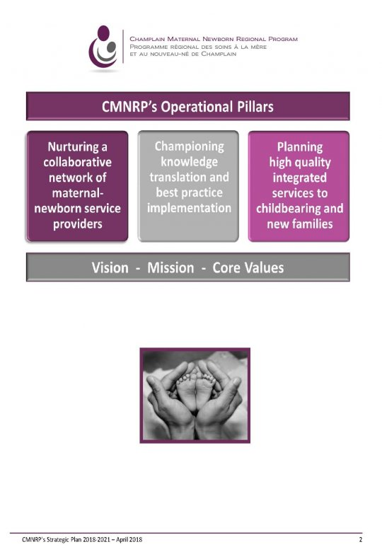 Strategic Plan Champlain Maternal Newborn Regional Program